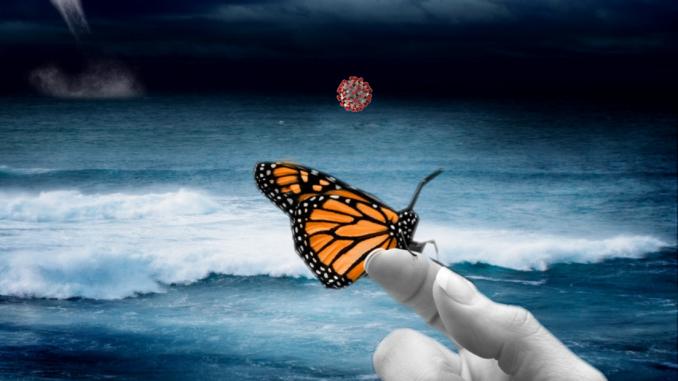 Ефект метелика в кризу