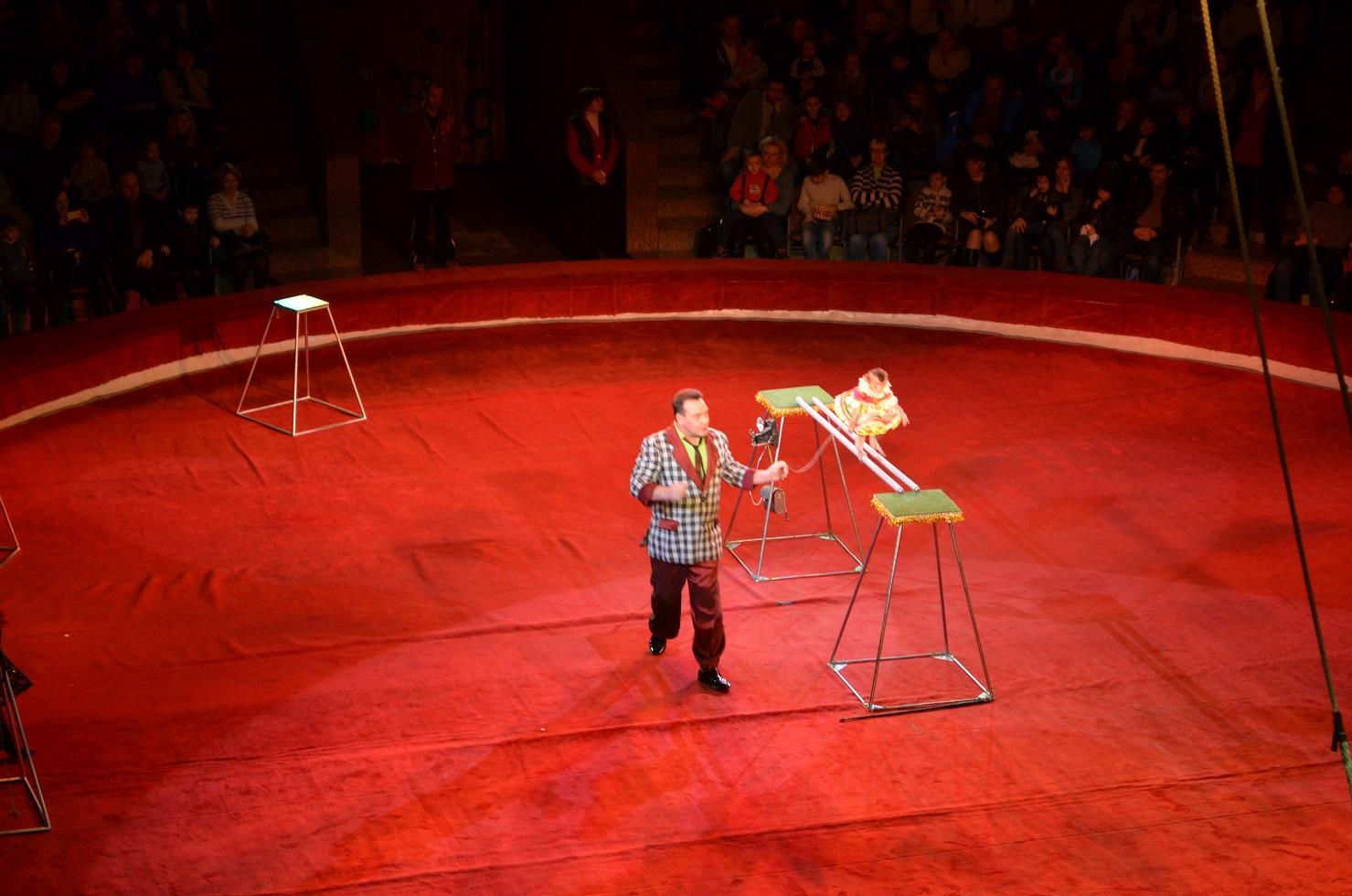 Kyiv_circus201501 (16)