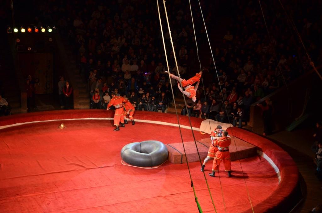 Kyiv_circus201501 (20)